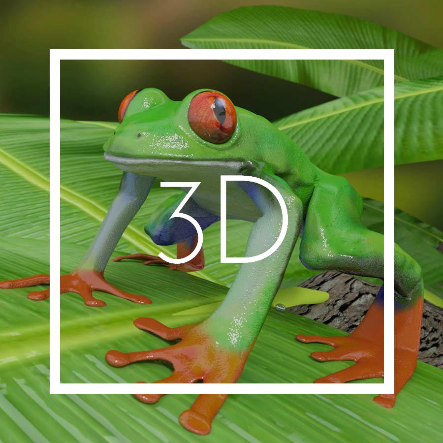 3D - solvejgdesign