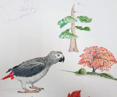 Croquis animaux - solvejgdesign